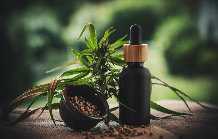Potencial del Cannabis en el mercado internacional
